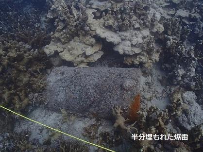 海底に半分埋もれた爆雷