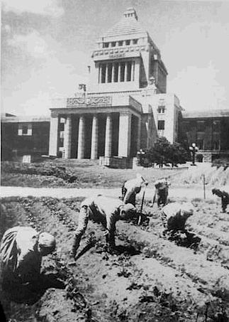 戦後の食料難で農場と化した議事堂前広場
