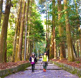狭野神社 4