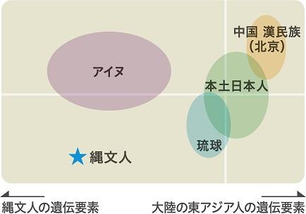 現代日本列島3集団と縄文人の比較