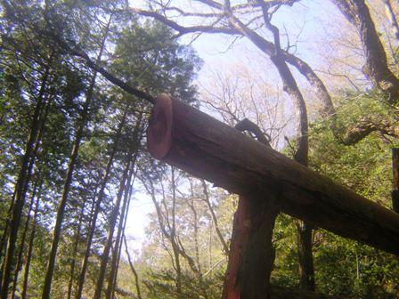 2016_04_17_赤岩尾神社_116