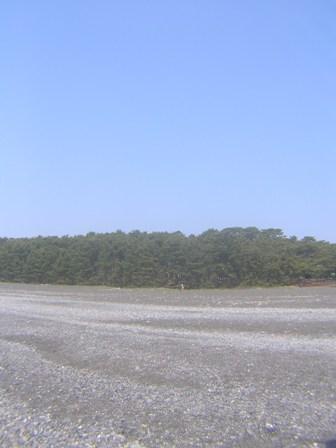 2016_05_01_静岡_カメラ2_057