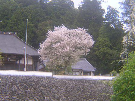 2016_04_25_伊勢奥津_082