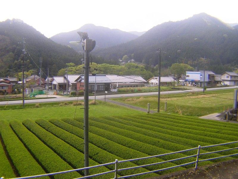2016_04_25_伊勢奥津_087