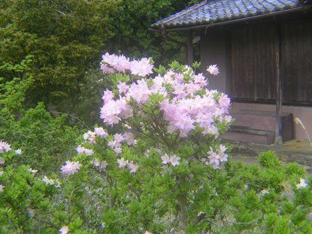 2016_04_25_伊勢奥津_108