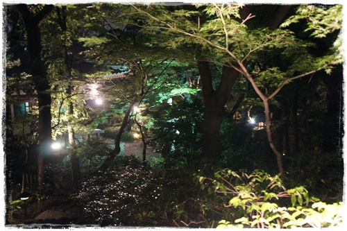 東京26日ⅡDSC03834