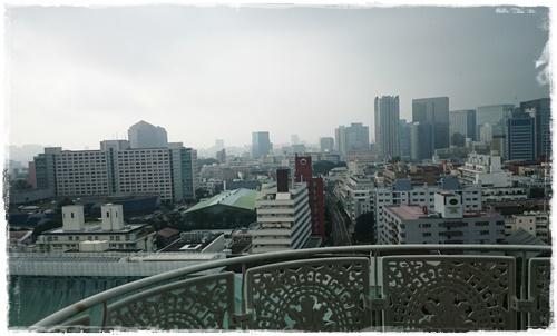 東京27日DSC_5271