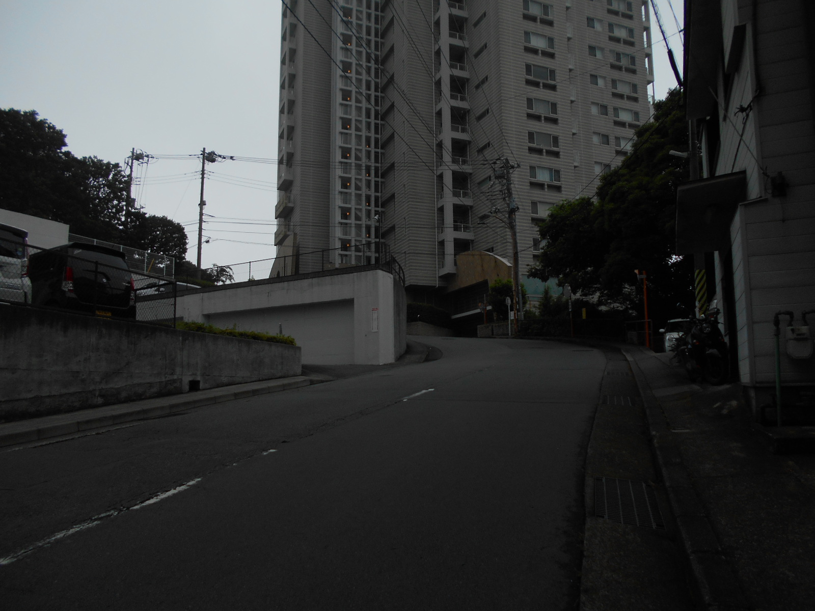 DSCN0269.jpg