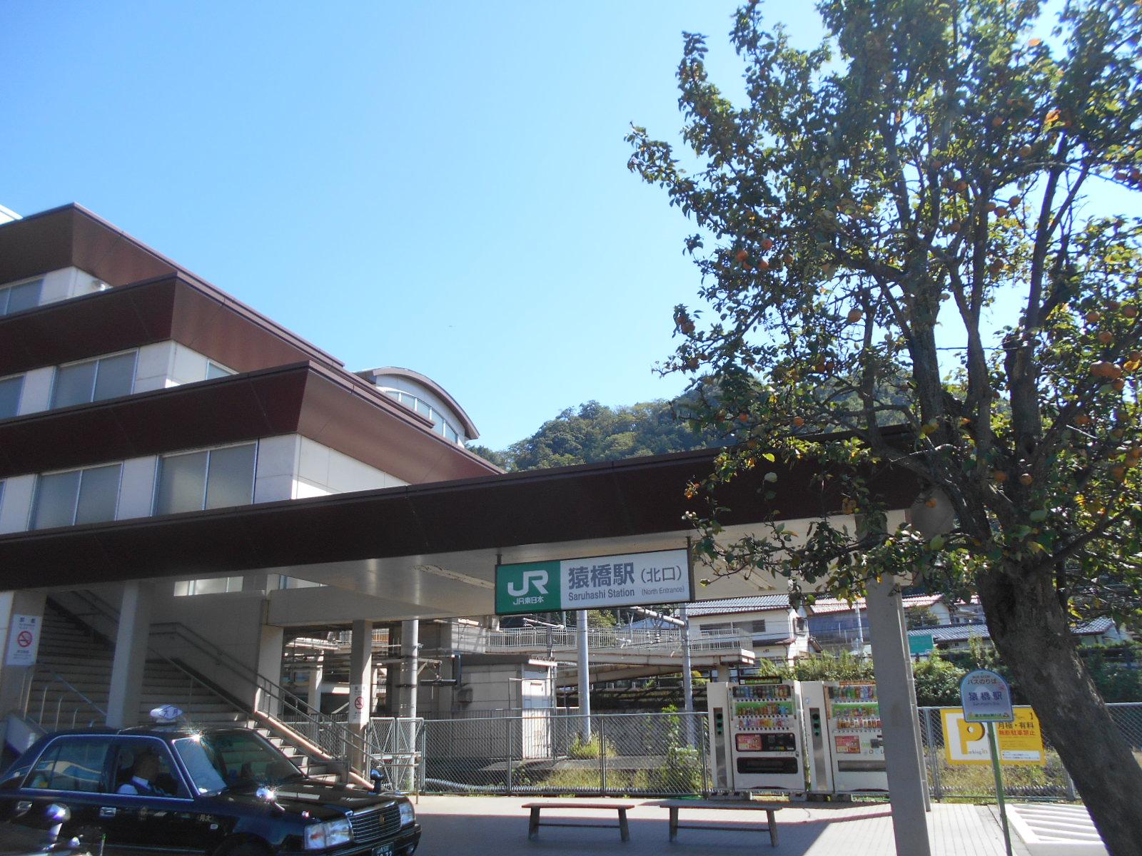 DSCN3306.jpg