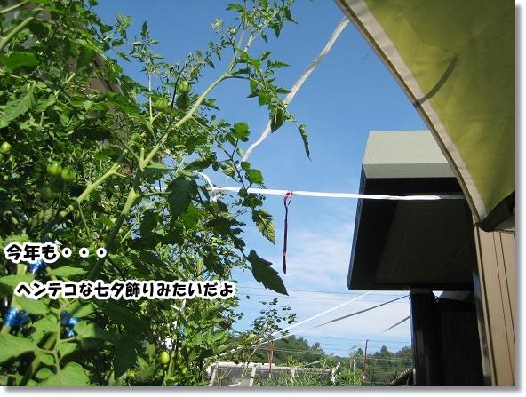 IMG_5686-3.jpg