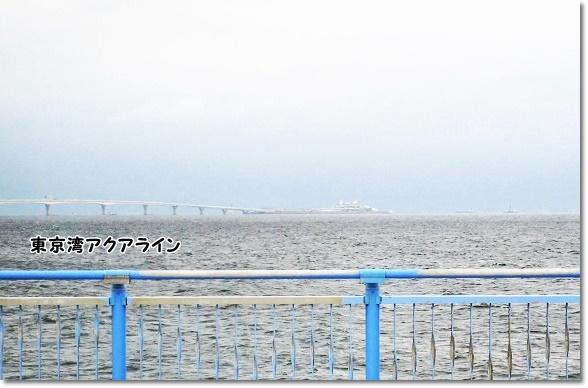 IMG_6150-3.jpg