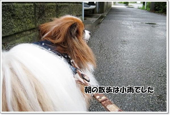 IMG_6199-3.jpg