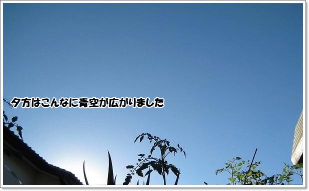 IMG_6208-4.jpg