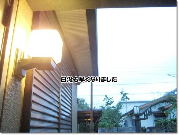IMG_6356-2.jpg