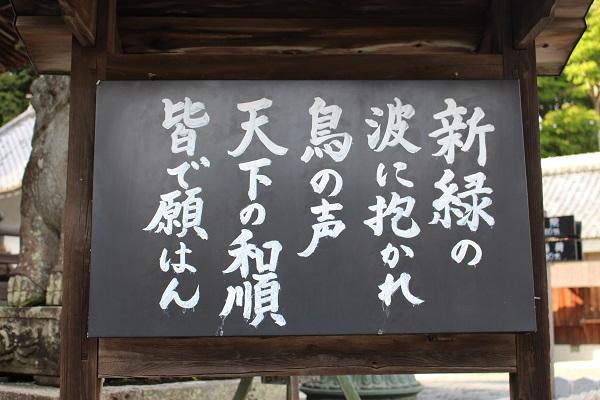 2016.05.16 柳谷観音リベンジ-3