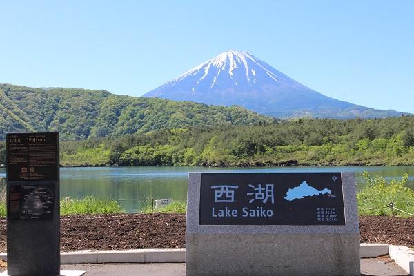 2016.05.29 富士五湖旅行 1日目④ 西湖-1