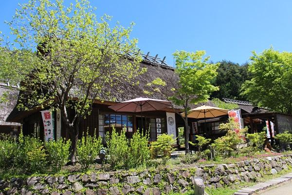 2016.05.29 富士五湖旅行 1日目⑤ 西湖いやしの里根場②-14