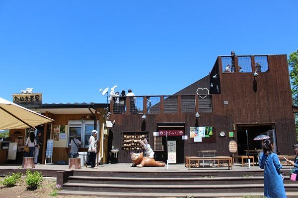 2016.05.30 富士五湖旅行 1日目⑥ 河口湖カチカチ山ロープウェイ-10