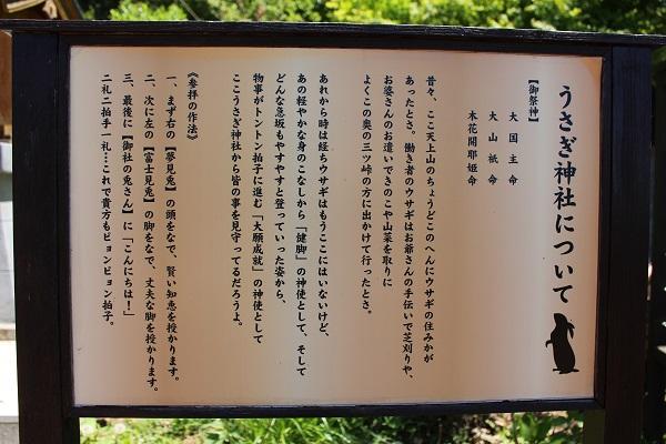 2016.05.30 富士五湖旅行 1日目⑥ 河口湖カチカチ山ロープウェイ-14