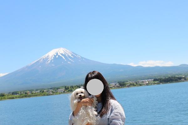 2016.05.31 富士五湖旅行 1日目⑩ 大石公園-5