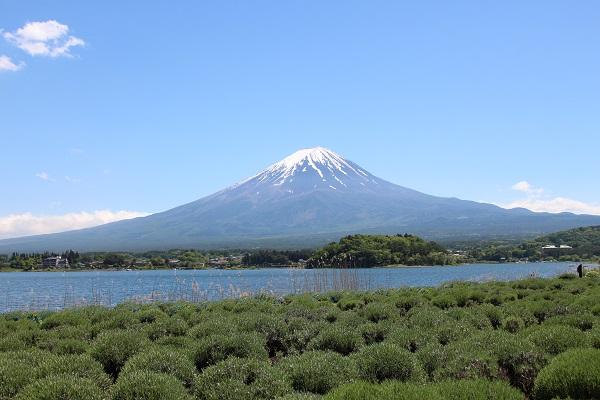 2016.05.31 富士五湖旅行 1日目⑩ 大石公園-6