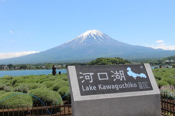 2016.05.31 富士五湖旅行 1日目⑩ 大石公園-8