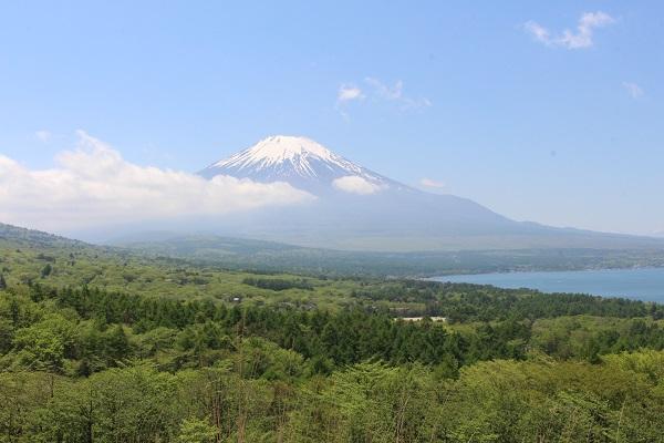 2016.06.03 富士五湖旅行 2日目④ パノラマ台-5