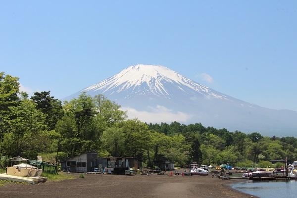 2016.06.04 富士五湖旅行 2日目⑤ 山中湖白鳥の湖①-1