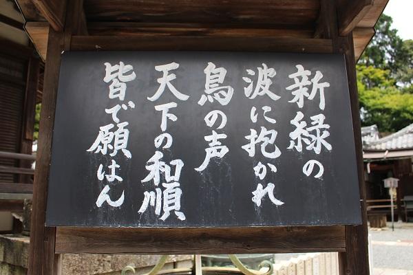 2016.06.19 柳谷観音①-3