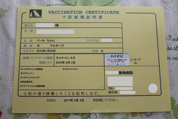 2016.08.07 混合ワクチン接種-9
