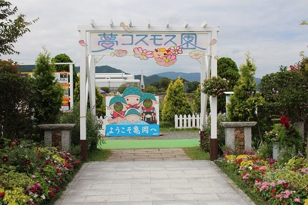2016.10.16 亀岡夢コスモス園①-1