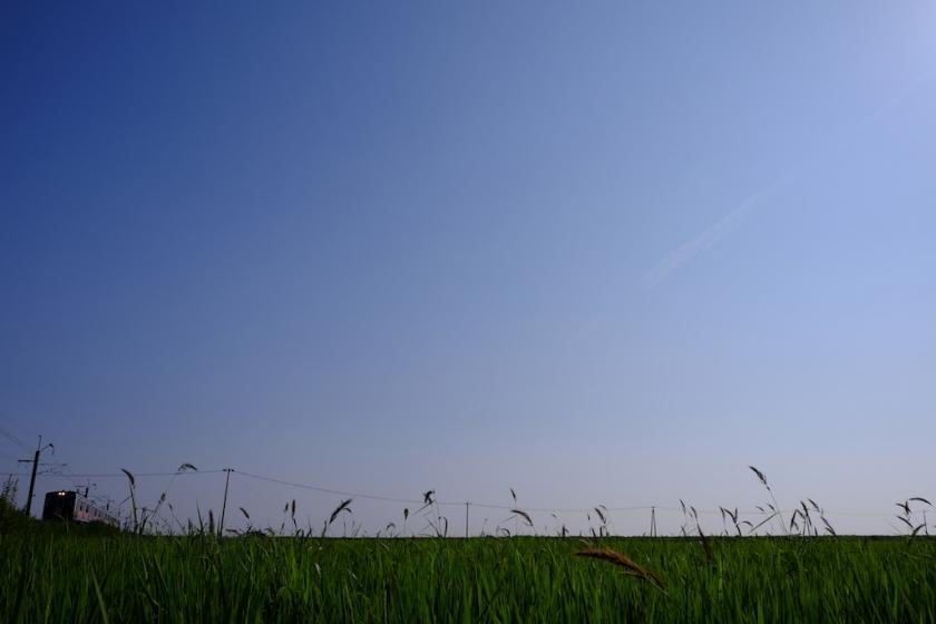 katagami (1)