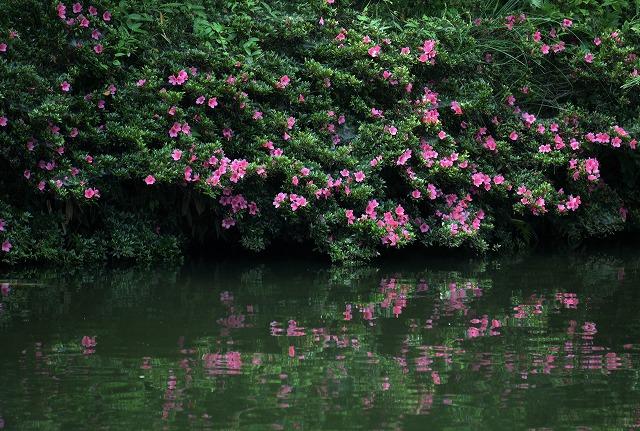 三景園11