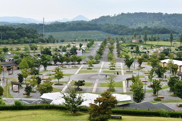 夢公園12