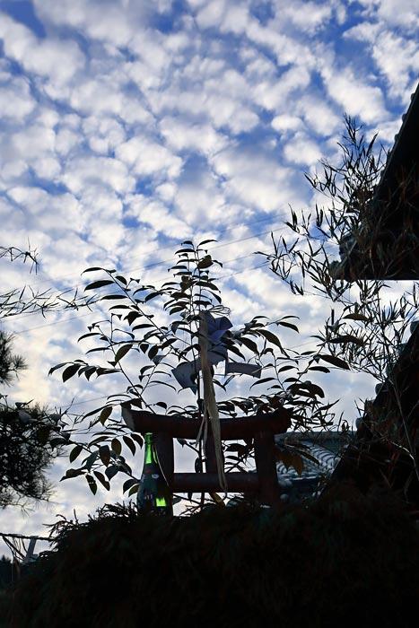 櫟原のオハキツキ3
