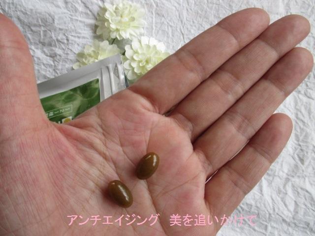 生酵素サプリ「野の恵」 1日2粒