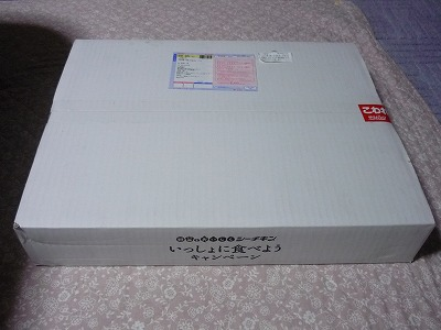 P1160267.jpg