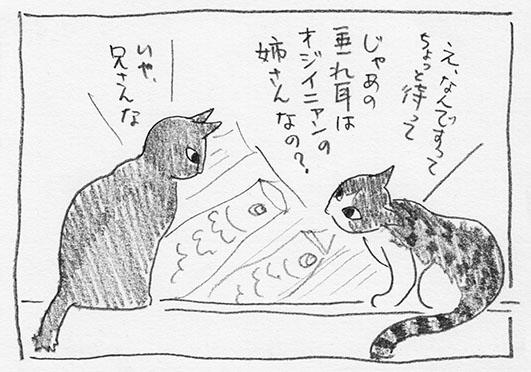 4-ジイニャンと軽