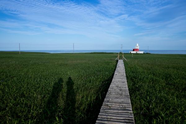 落石灯台への道