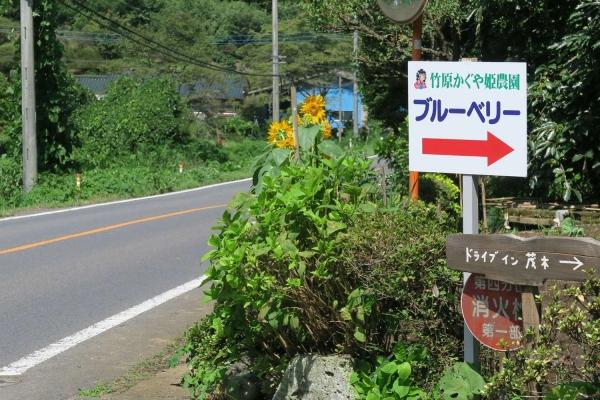 ドライブイン茂木(雨余花・serendip・町田古本店)