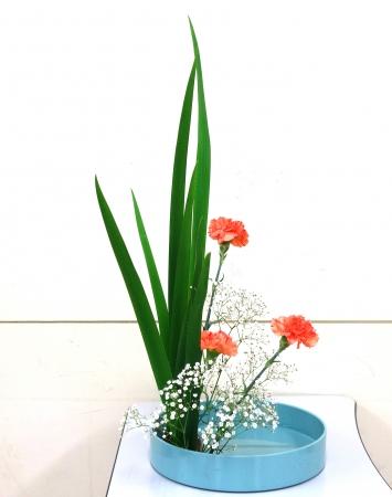 DSC00602-盛り花160509