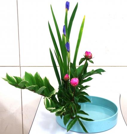DSC00605-盛り花160516