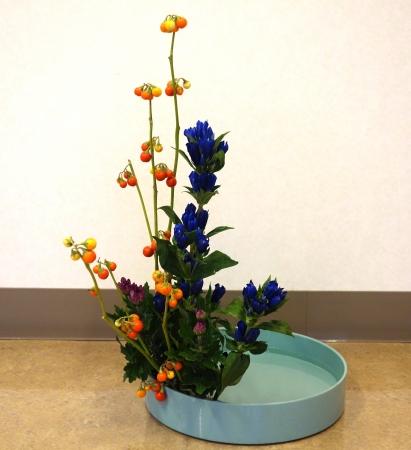 DSC00646-盛り花160829