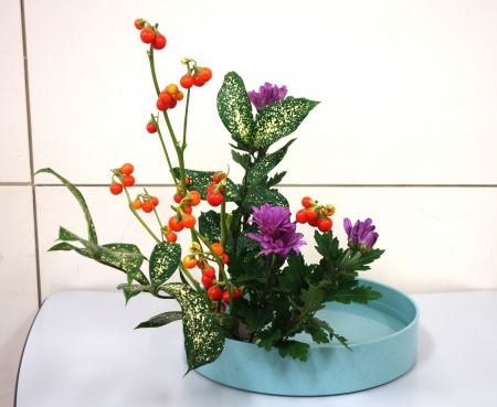 DSC00654-盛り花160905