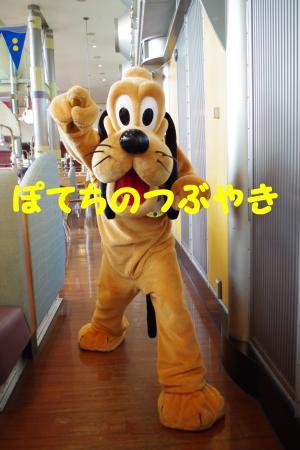 20160417 ズン (4)