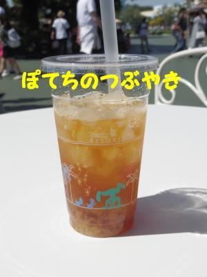 20160505 アップティー&ジンジャー