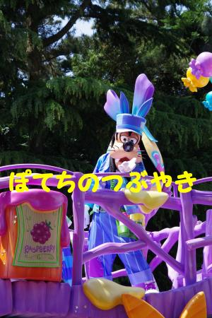 20160507 ヒピホピ (1)