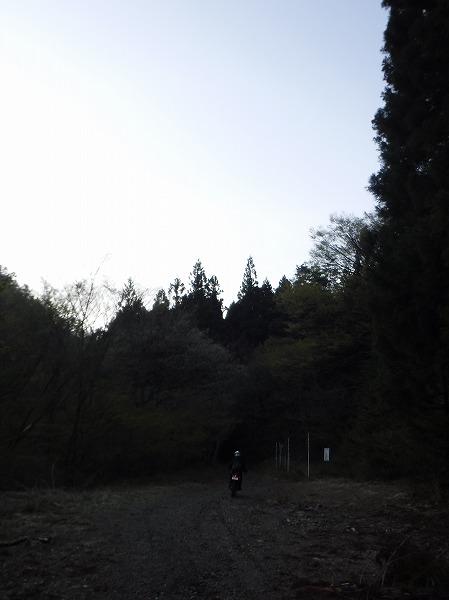 DSCF9184.jpg