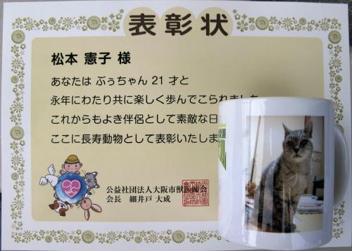 boo_20160925.jpg