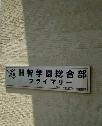 開智総合部